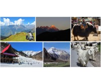 Tour to Magical and Picturesque Manali