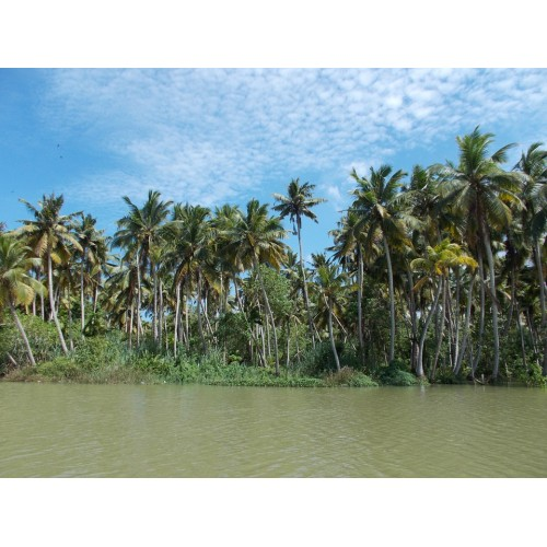 Trivandrum is a Very Popular and Spectacular Tourist Spot to visit